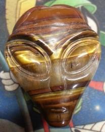 Solar Hawk He is Tiger Eye